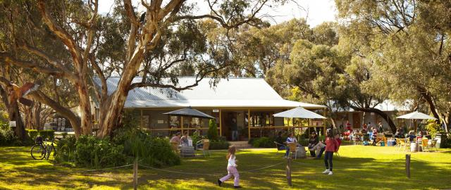 Best Barossa Cellar Doors (Part One!)