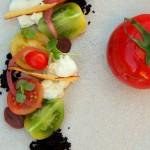 Appellation-Tomato-dish-150x150