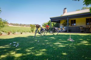 Seppeltsfield luxury Barossa vineyard accommodation - our back lawn, activities, what to do in the Barossa